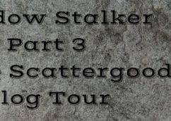 Shadow Stalker by Renee Scattergood