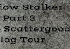Shadow Stalker by Renee Scattergood